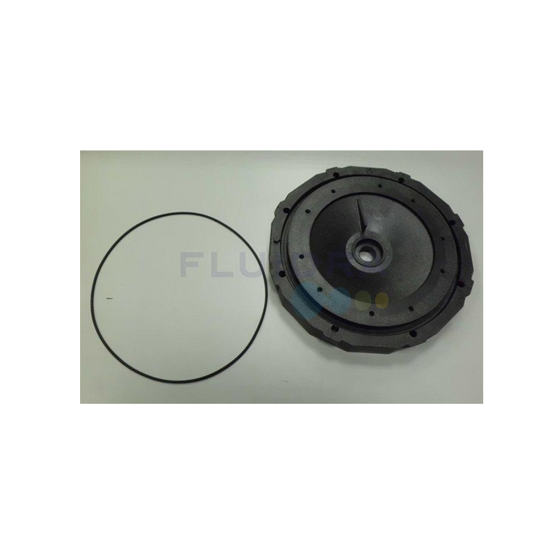 Astral Mechanical Seal Plate No.19 4405010132
